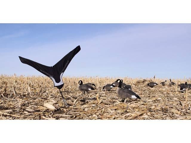 4 варианта как ощипать гуся  быстро и правильно в домашних условиях | птичник club
