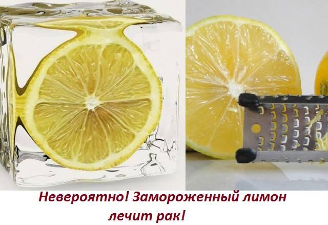 Применение масла чайного дерева : инструкция по применению | компетентно о здоровье на ilive