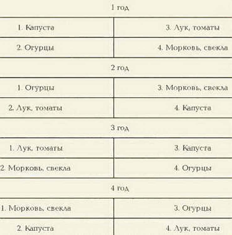 Таблицы севооборота овощных культур на дачном участке - молочай