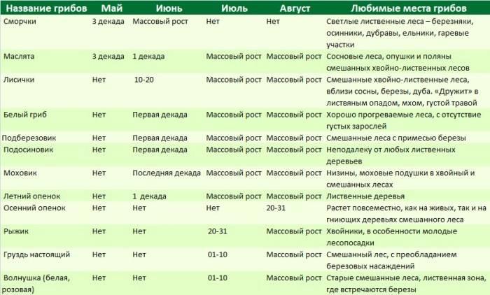 Карта грибов в Подмосковье
