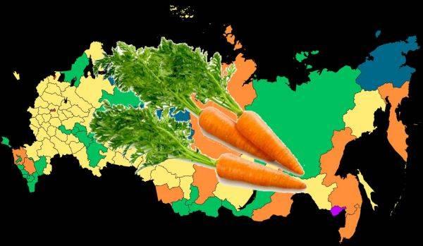 Когда лучше высаживать морковь по лунному календарю в 2021 году