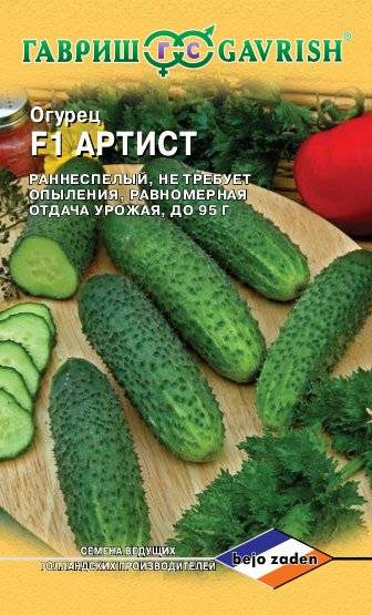 Огурец страж f1 - описание и правила выращивания сорта, фото, отзывы