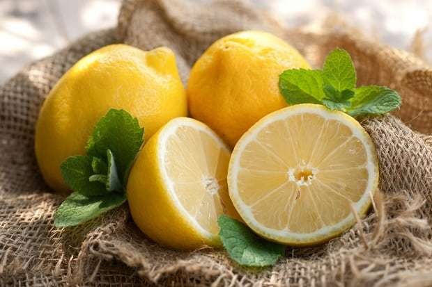 Лимон — химический состав, пищевая ценность, бжу