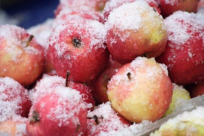 Как заморозить яблоки в морозилке холодильника на зиму