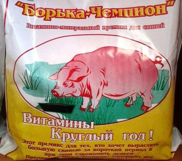 Какой премикс для свиней лучше: состав кормовой добавки