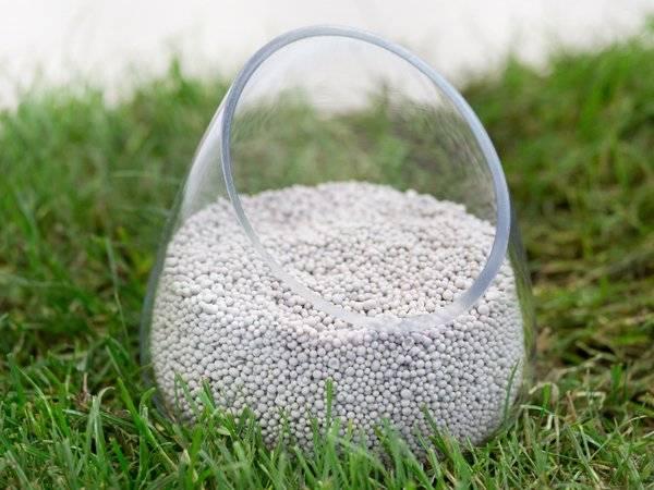 Значение фосфорных удобрений для растений