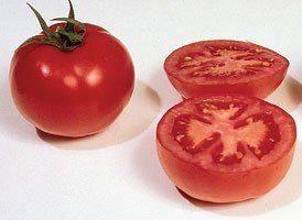 Описание сорта томата гс-12 f1, его характеристика и урожайность – дачные дела