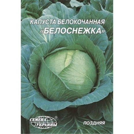 Обзор лучших сортов капусты, их особенностей и прихотей