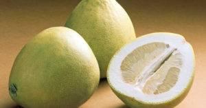 Фрукт помело: полезные свойства и вред, как выбрать и съесть