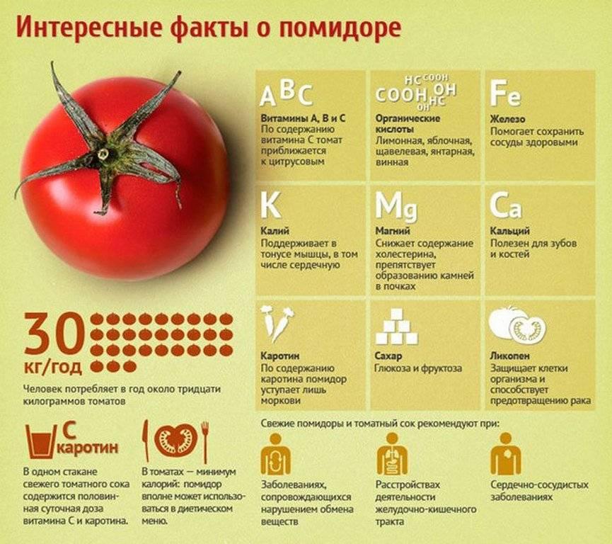 Сколько калорий в одном помидоре