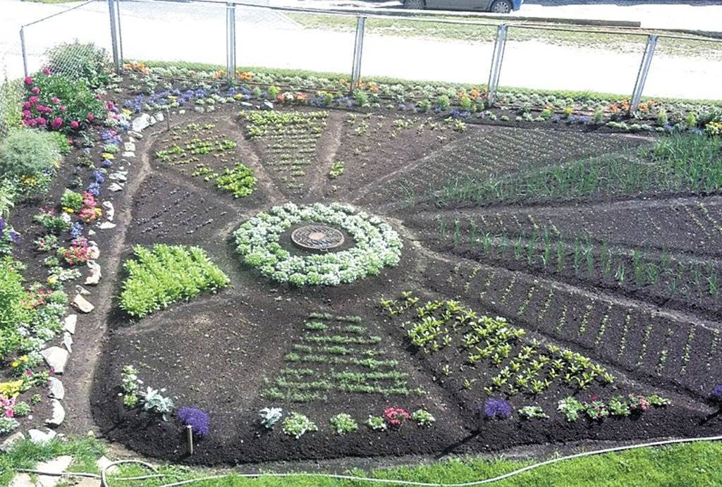 Планировка огорода: не только красивый, но и урожайный огород