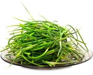 Чеснок: польза и вред для здоровья человека, сколько нужно съесть