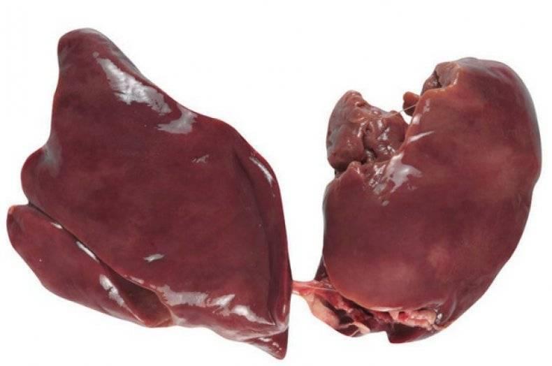 Печень индейки: польза и вред, ее калорийность
