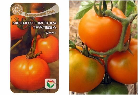"""Описание томатов сорта """"ирина"""": особенности выращивания"""