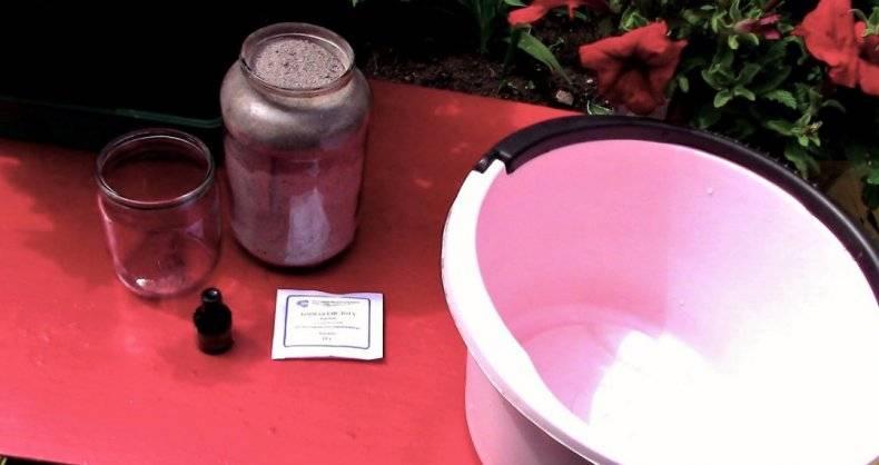 Подкормка томатов во время цветения и завязывания плодов
