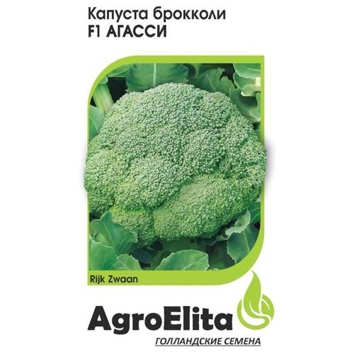 Какой сорт брокколи лучше посадить