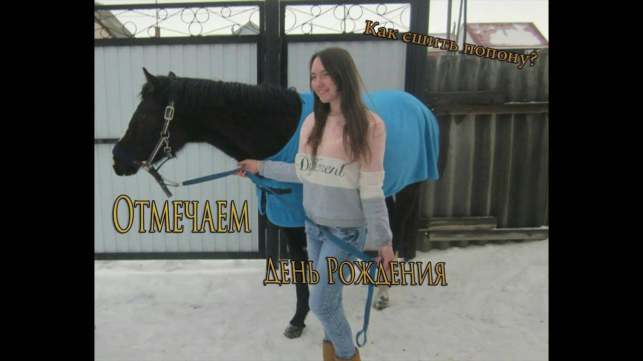 Один из самых незаменимых предметов конного снаряжения – попона