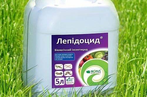 Биопрепарат лепидоцид — лучшая защита растений от вредителей