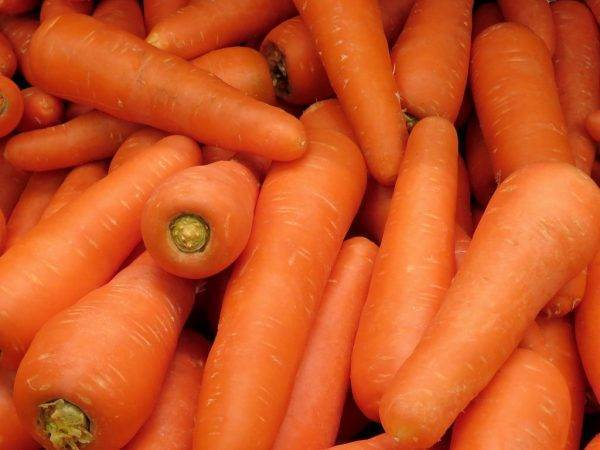 Морковь нандрин f1: фото сорта, отзывы, описание, агротехника.