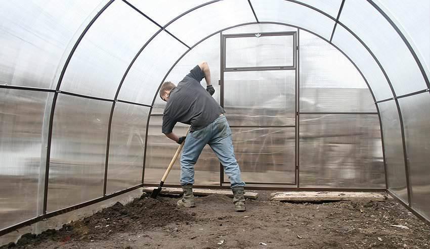 Подготовка грунта в теплице для посадки огурцов