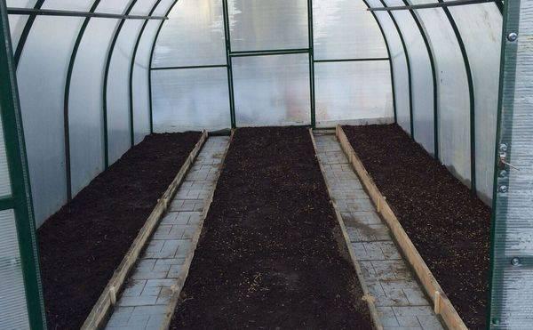 Подготовка теплицы к весне: обработка перед посадкой от вредителей и болезней
