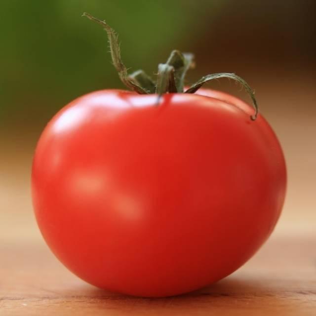 Помидор «настенька»: описание и секреты выращивания