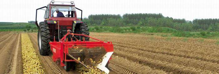 Мини комбайн для уборки картофеля - техника и спецтехника в подробностях