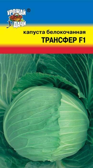 Посоветуйте хорошие сорта белокочанной капусты