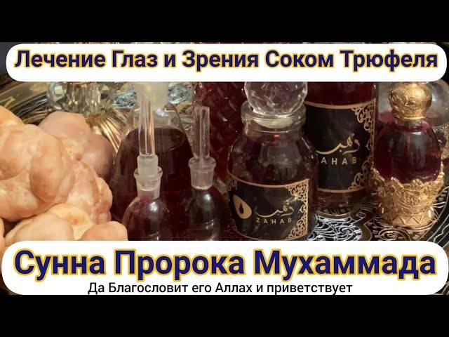 Чем полезен гриб трюфель: польза и вред, полезные свойства и калорийность