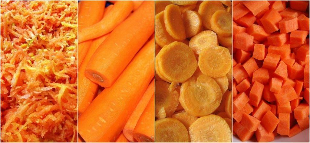 Как заморозить морковь на зиму в морозилке и сроки хранения