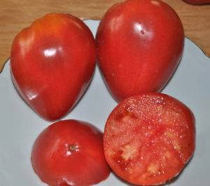 Сорт Орлиный клюв — томаты удивительной формы и вкуса