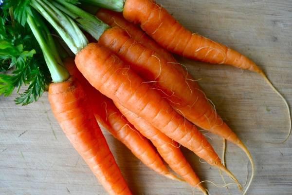 Морковь при беременности: польза и вред свежей моркови для беременных женщин на 1, 2 и 3 триместре. применение от изжоги и токсикоза