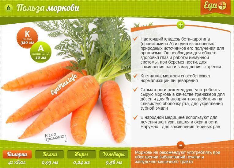 Печеная морковь в духовке польза и вред
