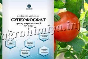 Суперфосфат: применение удобрения на огороде (для чего), как растворить, норма внесения, отзывы, состав