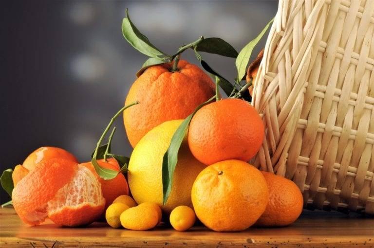 Худейте с пользой! попробуйте апельсиновую диету