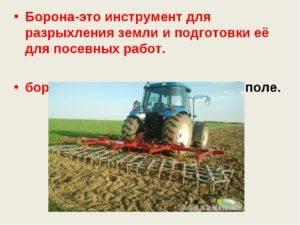Боронование озимых посевов после зимовки