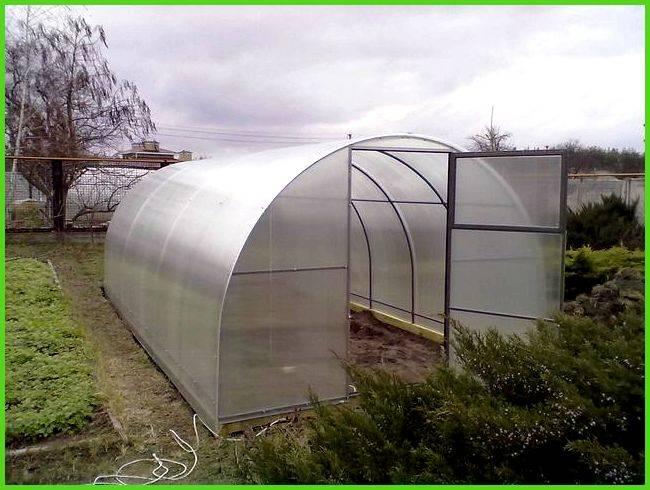 Как выбрать поликарбонат для теплиц: какой лучше, материал, покрытие, толщина, плотность, виды поликарбоната, свойства русский фермер
