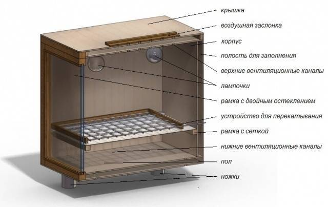 Инкубатор для перепелов своими руками: советы по изготовлению