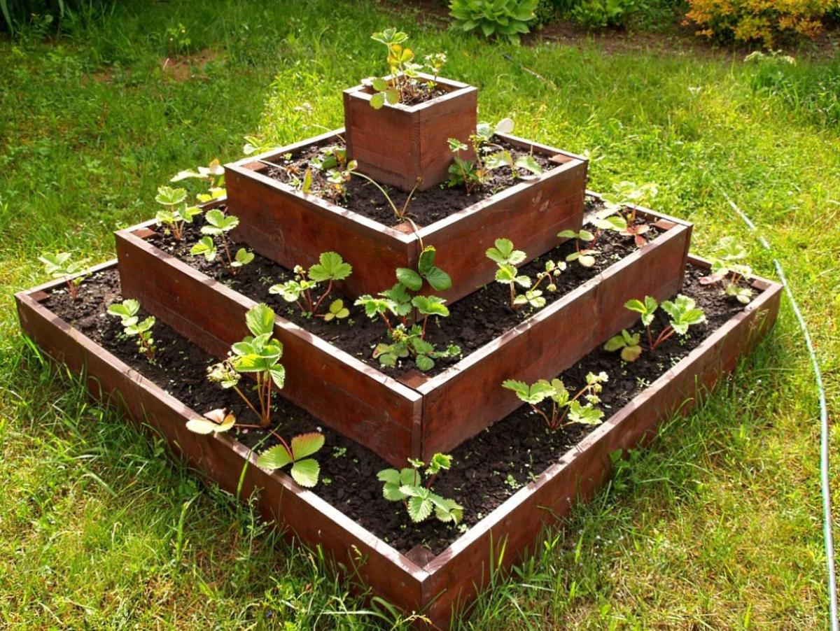 Вертикальные грядки для клубники - 110 фото как построить правильно вертикальные грядки для фруктов, цветов и овощей
