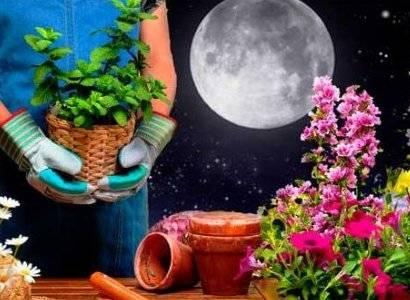 Луна в скорпионе в гороскопе у женщин и мужчин: значение