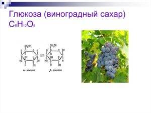 Содержание глюкозы в винограде - о здоровье