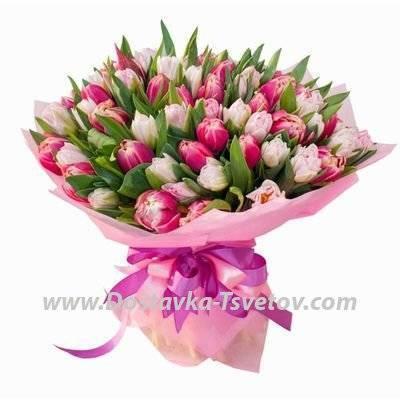 Виды и сорта (названия) тюльпанов: махровые и пионовидные, папугайные и лилейные, фостера и джезеппе верди