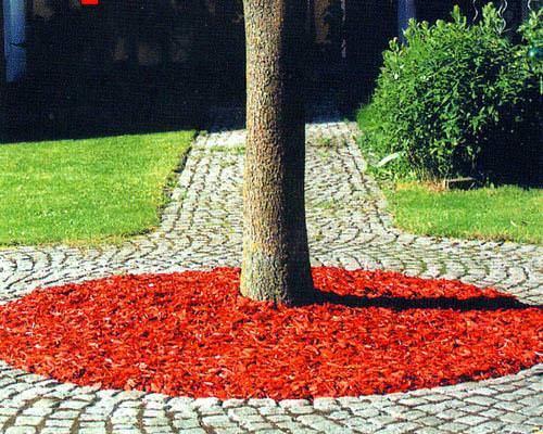 Приствольные круги плодовых деревьев: оформление