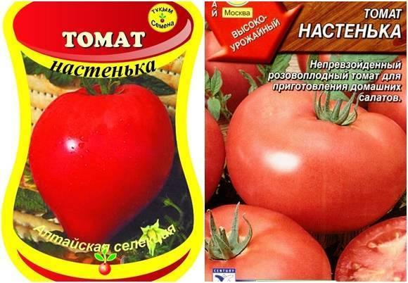 """Томат """"анастасия"""": масса достоинств и простое выращивание"""