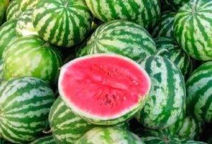 Какие сорта арбузов предпочтительнее для посадки в сибири