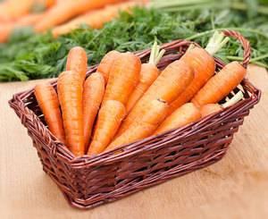 Какую землю любит морковь и как без ошибок подготовить грядку под нее?