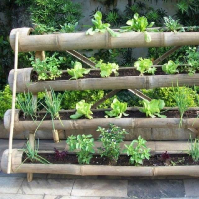 Вертикальные грядки для клубники своими руками: фото, особенности выращивания, посадка в пластиковые бутылки