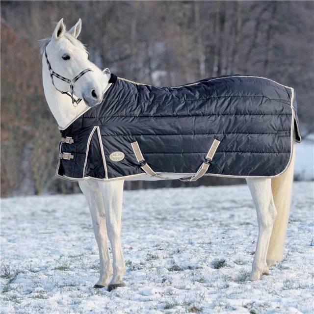 Попона для лошади: виды, как сшить своими руками?