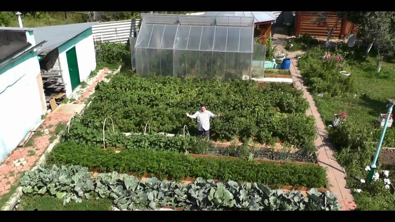Схема правильного планирования огорода для посадки овощей