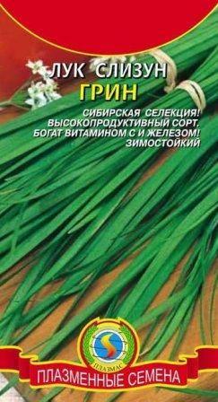 Лук-слизун . посадка, размножение, уход, сорта, фото на supersadovnik.ru